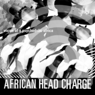 Vision Of A Psychedelic Africa (2枚組アナログレコード)