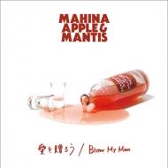 愛を贈ろう / Blow My Man (7インチシングルレコード)