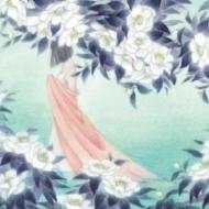 蝶になる夢を見た (アナログレコード)