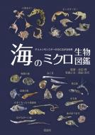 海のミクロ生物図鑑 チリメンモンスターの中に広がる世界