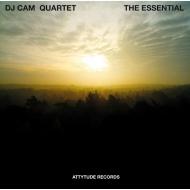 Essential (アナログレコード)