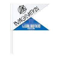 三代目 J SOUL BROTHERS PERFECT LIVE フラッグ / IMAGINATION