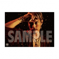 SPECIAL SHOWCASE RYUJI IMAICHI ポスター