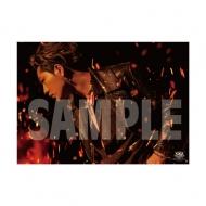SPECIAL SHOWCASE HIROOMI TOSAKA ポスター