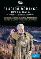 アレーナ・ディ・ヴェローナ音楽祭 2019〜プラシド・ドミンゴ 50周年記念オペラ・ガラ(日本語字幕付)(2DVD)