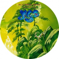 Fly From Here: Return Trip (180gsm Picture Disc Lp)