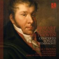 フンメル編:モーツァルト:ピアノ協奏曲第24番&ベートーヴェン:交響曲第1番、フンメル:ピアノ・ソナタ第3番 アウレリア・ヴィショヴァン、他