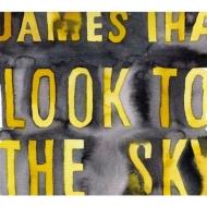 Look To The Sky【2020 レコードの日 限定盤】(アナログレコード)