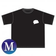 BIG Tシャツ(M)/ Paint it,SKY