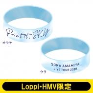 ラバーバンド/ Paint it,SKY【Loppi・HMV限定】