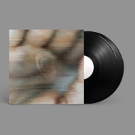 Entamerous Metamorphosis (2枚組アナログレコード)