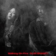 Walking On Fire 【初回限定盤】(2CD+DVD)