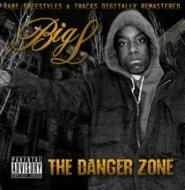 Danger Zone【2020 RECORD STORE DAY 限定盤】(2枚組アナログレコード)