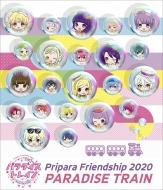 Pripara Friendship 2020 パラダイストレイン!
