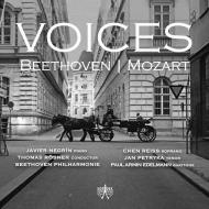violin Concerto, Etc: Negrin(P)Rosner / Beethoven Po Reiss(S)Petryka(T)P.a.edelmann(Br)+mozart