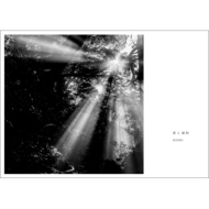 《Loppi・HMV限定》 愛と調和 <Premium Edition>
