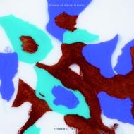 クラウン・オブ・ファジー・グルーヴ 【完全限定生産】(45回転/2枚組アナログレコード)