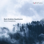 ベートーヴェン:ピアノ・ソナタ第29番『ハンマークラヴィーア』、バッハ:イタリア協奏曲、ブラームス:6つのピアノ曲 川島 基(2CD)
