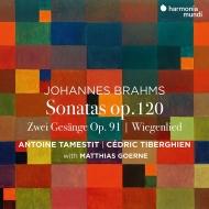 ヴィオラ・ソナタ第1番、第2番、2つの歌、他 アントワン・タメスティ、セドリック・ティベルギアン、マティアス・ゲルネ