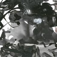 Watarase (12インチシングルレコード)