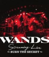 WANDS Streaming Live 〜BURN THE SECRET〜