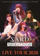 SARD UNDERGROUND LIVE TOUR 2020