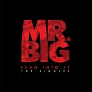 Lean Into It -The Singles (5枚組7インチシングルレコード+ギターピック+ポスター/ボックス仕様)
