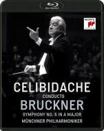 交響曲第6番 セルジウ・チェリビダッケ&ミュンヘン・フィル(1991)
