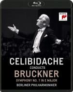 交響曲第7番 セルジウ・チェリビダッケ&ベルリン・フィル(1992)