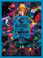 The Animals in Screen Bootleg 2 (Blu-ray)