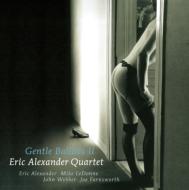 Gentle Ballads II (180グラム重量盤レコード/Venus Hyper Magnum Sound)