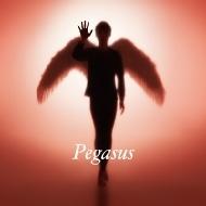 Pegasus 【初回生産限定盤】