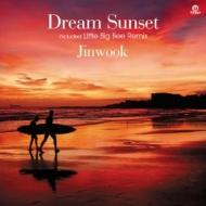 Dream Sunset (Dj Jinwook & Park Seung Bin)(7インチシングルレコード)
