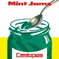 Mint Jams (アナログレコード)