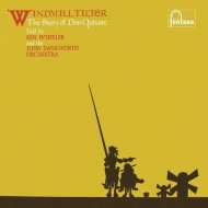 Windmill Tilter (180グラム重量盤レコード/Decca)