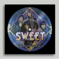 Level Headed Tour Rehearsals 1977 (Picture Disc)