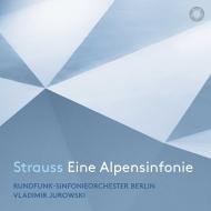 アルプス交響曲 ヴラディーミル・ユロフスキー&ベルリン放送交響楽団(日本語解説付)