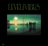 LEVEL THE VIBES feat.TETRAD THE GANG OF FOUR (7インチシングルレコード)