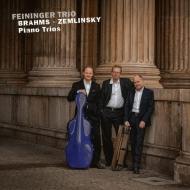 Brahms Piano Trio No.3, Zemlinsky Piano Trio : Feininger Trio