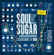 Excursions In Dub【2021 レコードの日 限定盤】(アナログレコード)