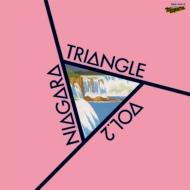 NIAGARA TRIANGLE Vol.2 40th Anniversary Edition 【完全生産限定盤】(2枚組アナログレコード)