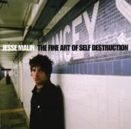 Fine Art Of Self Destruction