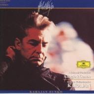 アルビノ−ニのアダ−ジョ、パッヘルベルの カラヤン/ベルリン・フィルハーモニー管弦楽団