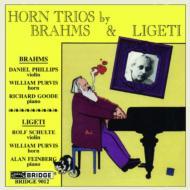 Horn Trio: Purvis(Hr)Phillips(Vn)Goode(P)Schulte(Vn)Feinberg(P)