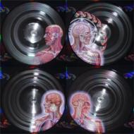 Lateralus (2枚組アナログレコード)
