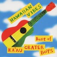 Hawaiian Vibes -best Of