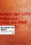 Barracuda Tokyo Six Days