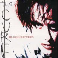 Blood Flowers