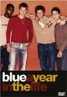 Year In The Life Of Blue