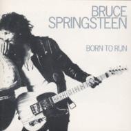 Born To Run: 明日なき暴走